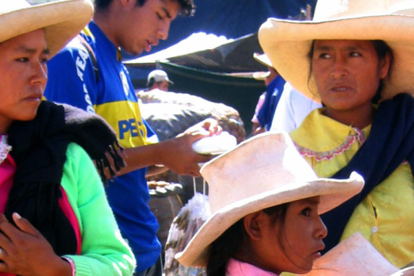 Peruanas Anaperus